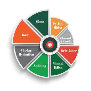 Åtta element i det holistiska hjulet